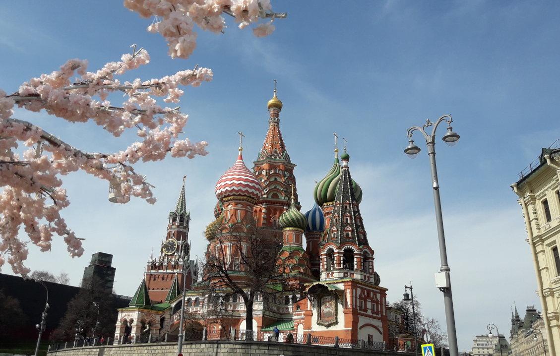 Moskau Roter Platz Basilius Kathedrale