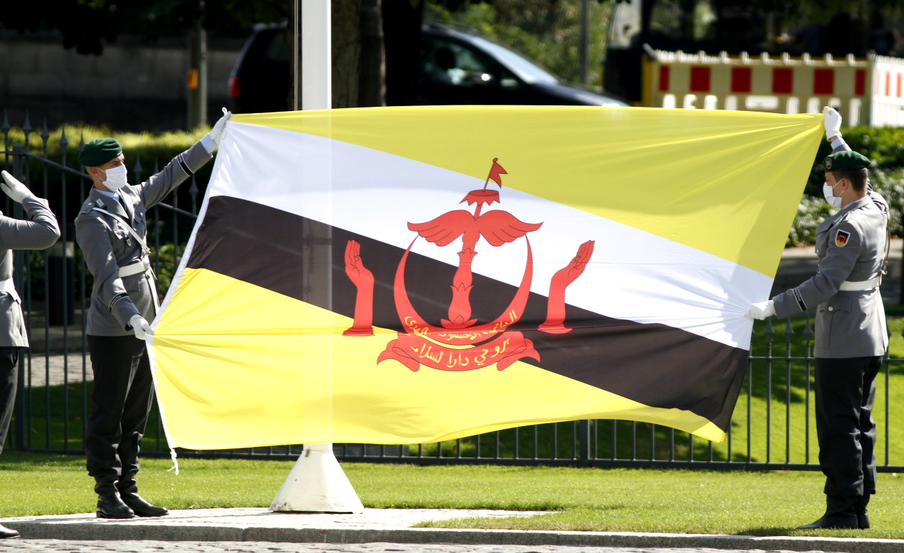 Botschafterin von Brunei Darussalam, Pengiran Hajah Krtini Pengiran Haji Tahir, bei Bundespräsident Frank-Walter Steinmeier akkreditiert