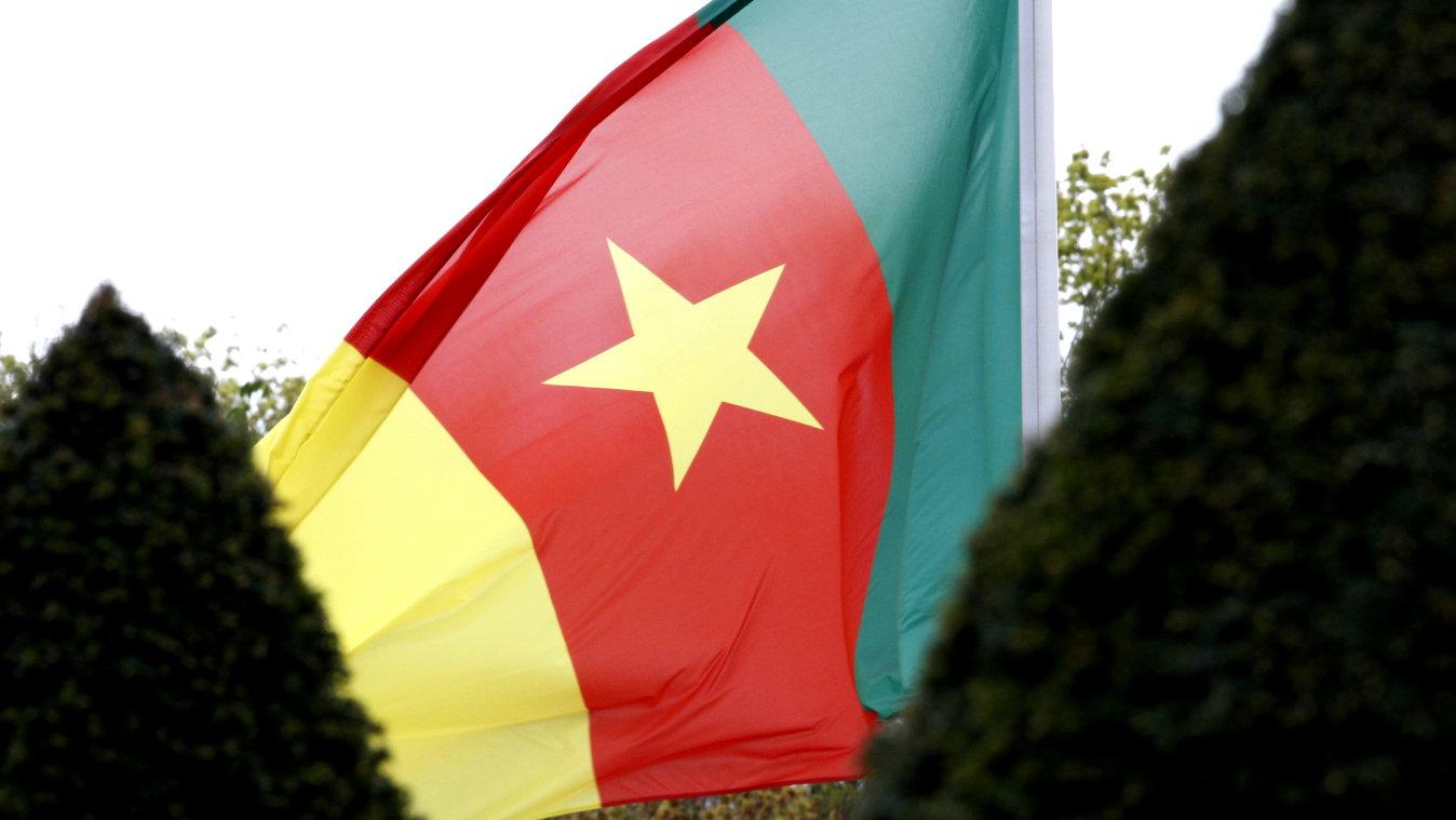 Botschafter der Republik Kamerun, Victor Ndocki, bei Bundespräsident Frank-Walter Steinmeier im Schloss Bellevue akkreditiert